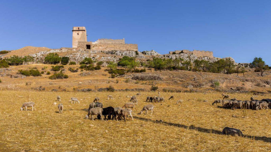Una escapada rural a Albacete